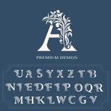 Uppsättning av eleganta bokstäver Behagfull lyxig stil Calligraphic härlig logo Tappning dragit alfabetemblem för bokdesignen, mä stock illustrationer