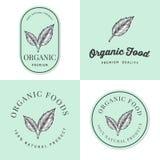 Uppsättning av emblem, baner, etiketter och logoer för organisk naturlig och ny livsmedelsprodukt med det hand drog bladet Förpac Arkivfoto
