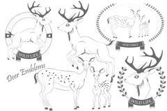 Uppsättning av emblem med hjortvektorn Royaltyfria Bilder