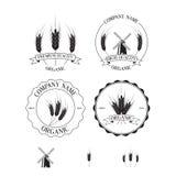 Uppsättning av etiketter, emblem och designbeståndsdelar med råg Royaltyfri Foto