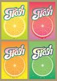 Uppsättning av etiketter för förpackande fruktsaft Royaltyfri Bild