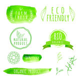 Uppsättning av etiketter för organisk mat för vattenfärg Eco produkt Royaltyfri Fotografi