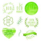 Uppsättning av etiketter för organisk mat för vattenfärg Eco produkt Arkivfoton