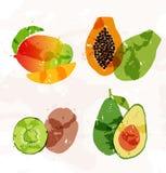Uppsättning av färgrika fläckar för ny frukt Arkivbild