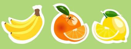 Uppsättning av färgrika fruktklistermärkear Arkivfoton