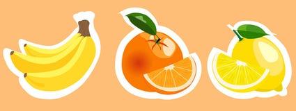 Uppsättning av färgrika fruktklistermärkear för vektor Arkivfoton
