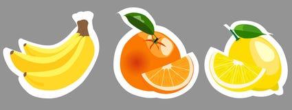 Uppsättning av färgrika fruktklistermärkear för vektor Royaltyfri Fotografi