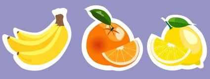 Uppsättning av färgrika fruktklistermärkear för vektor Royaltyfri Bild