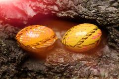 Uppsättning av färgrika lyckliga easter handgjorda ägg Royaltyfri Fotografi