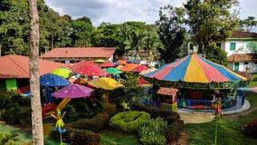 Uppsättning av färgrika paraplyer och en trädgård royaltyfri fotografi