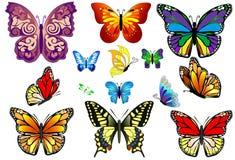 Uppsättning av färgrika realistiska isolerade fjärilar. Arkivfoto