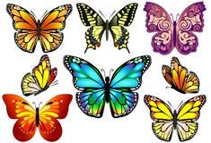 Uppsättning av färgrika realistiska isolerade fjärilar. Fotografering för Bildbyråer