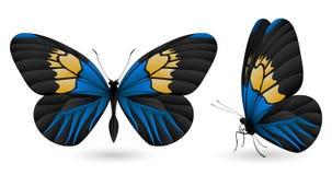 Uppsättning av fjärilar som isoleras på vit bakgrund Fotografering för Bildbyråer