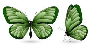 Uppsättning av fjärilar som isoleras på vit bakgrund Royaltyfri Bild