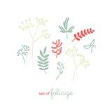 Uppsättning av floror och lövverk royaltyfri illustrationer