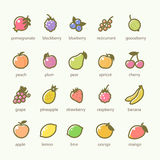 Uppsättning av frukt- och bärsymboler Arkivfoto