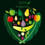 Uppsättning av frukter och grönsaker som läggas artistically ut i form av framsidan Ställ in på en mörk bakgrund stock illustrationer