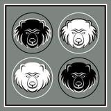Uppsättning av fyra björnhuvudemblem Arkivbild