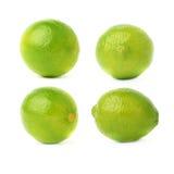 Uppsättning av fyra enkla limefrukter i olika sammansättningar och perspektiviska förkortningar som isoleras över den vita bakgru Arkivbilder