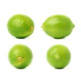 Uppsättning av fyra enkla limefrukter i olika sammansättningar och perspektiviska förkortningar som isoleras över den vita bakgru Royaltyfri Foto