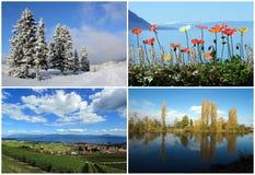 Uppsättning av fyra säsonglandskap Arkivbild