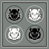 Uppsättning av fyra tigerhuvudemblem Fotografering för Bildbyråer