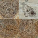 Uppsättning av fyra wood texturer Fotografering för Bildbyråer
