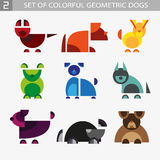 Uppsättning av geometrisk färgrik hundkapplöpning Royaltyfri Bild