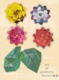Uppsättning av geometriska blommor Royaltyfri Fotografi