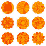 Uppsättning av geometriska prydnader för cirkel vektor Royaltyfri Fotografi
