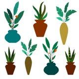 Uppsättning av gröna dekorativa husväxter och blommor i vasvektorillustration Krukan fejkar växten som isoleras på vit vektor illustrationer