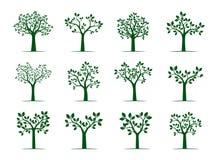 Uppsättning av gröna träd med sidor också vektor för coreldrawillustration Fotografering för Bildbyråer