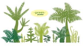 Uppsättning av gröna växter Arkivbild