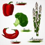 Uppsättning av grönsaken Royaltyfri Fotografi