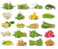 Uppsättning av grönsaken på vit bakgrund Arkivfoton