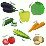 Uppsättning av grönsaken på vit bakgrund Fotografering för Bildbyråer