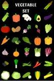 Uppsättning av grönsaker i plan stil Fotografering för Bildbyråer