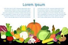 Uppsättning av grönsaker i plan stil Arkivbild