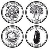 Uppsättning av grönsaketiketter eller klistermärkear Royaltyfri Fotografi