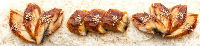 Uppsättning av Grilled ålen i ris Royaltyfria Bilder