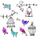 Uppsättning av gulliga fåglar och filialer av träd med fågels burar Royaltyfria Foton