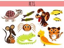 Uppsättning av gulliga tecknad filmdjur och fågelhusdjur Sköldpadda, spindel, katt, hund, akvariefisk, leguan, ödla och papegojam Arkivfoton