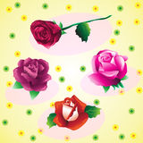 Uppsättning av härliga rosor Vektor Illustrationer