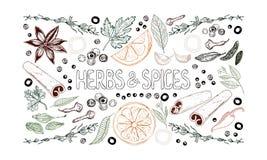 Uppsättning av hand dragen kryddor, örter, grönsaker, frukter och bokstäver på vit bakgrund royaltyfri illustrationer
