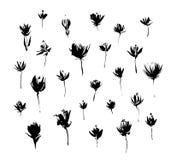 Uppsättning av hand drog moderna blommor Beståndsdelar för målarfärg för Grungestilfärgpulver för design Svart isolerad vektor på vektor illustrationer