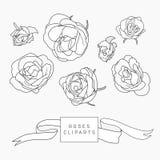 Uppsättning av hand drog rosa cliparts Royaltyfri Foto