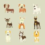 Uppsättning av hundkapplöpningsymboler Royaltyfria Bilder