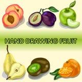 Uppsättning av illustrationer av frukt Arkivbilder