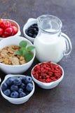 Uppsättning av ingredienser för en sund matfrukost - mysli, nytt och torkat - frukt, muttrar, goji royaltyfri foto
