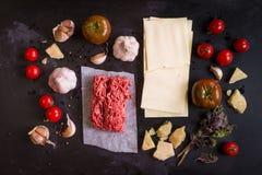 Uppsättning av ingredienser för italiensk lasagne Royaltyfri Foto